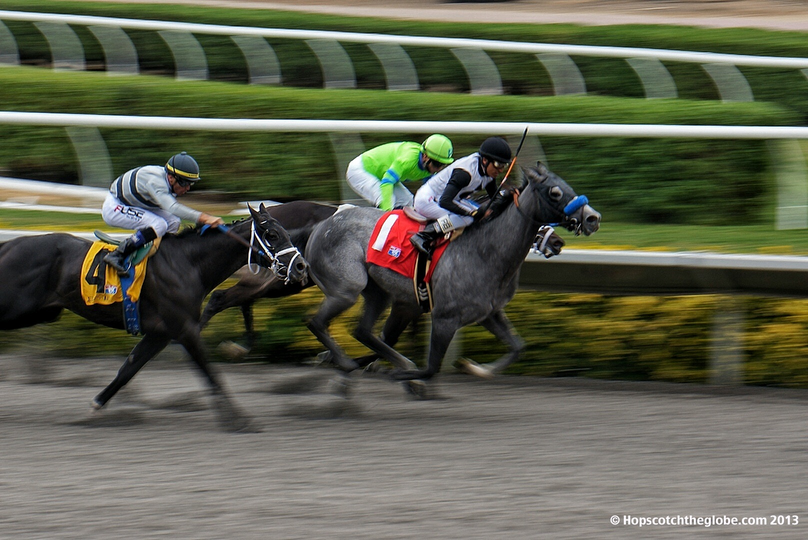HORSE RACING FEATURE