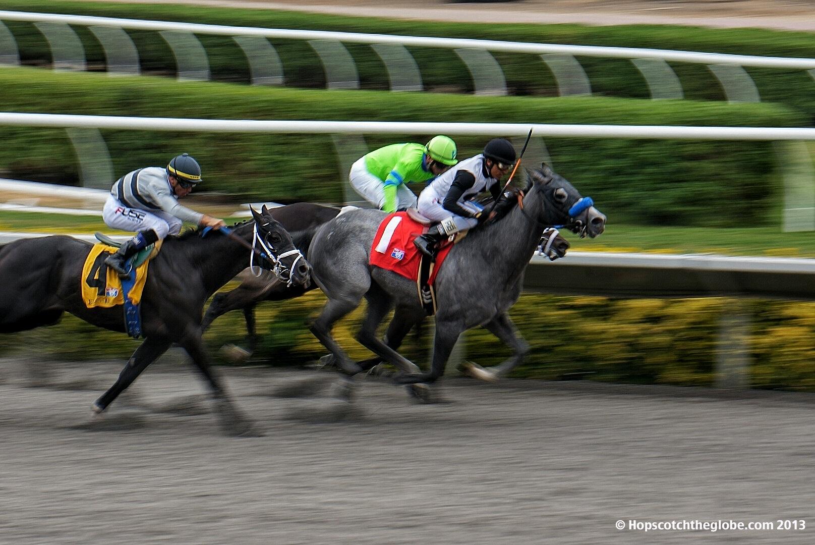 Horse Racing at Del Mar