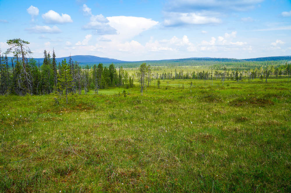 Landscapes of Tuntsa Wilderness Area in Lapland, Finland
