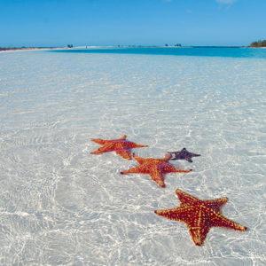 Cuba with Transat Holidays