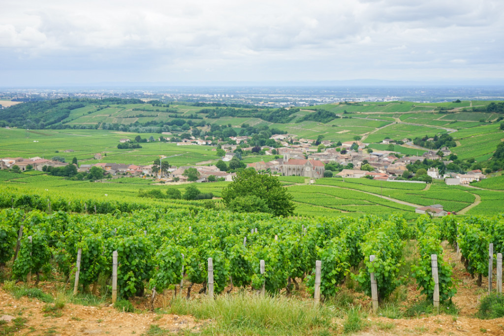 Landscapes of Burgundy_3