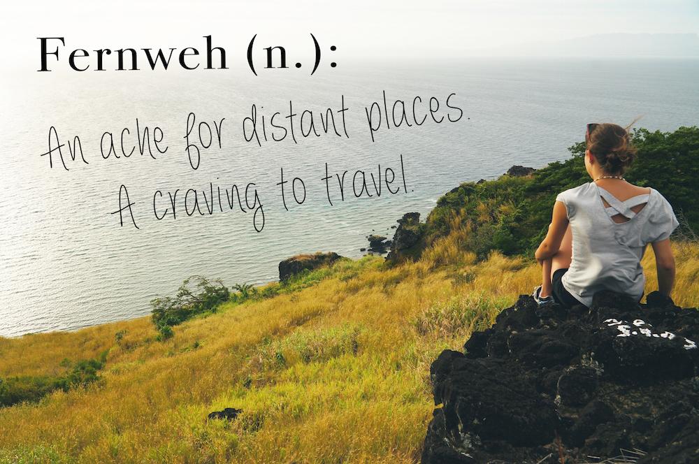 Traveller definition