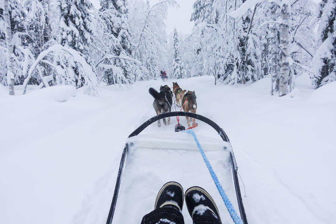 10 Awesome Winter Activities to Experience in Finland