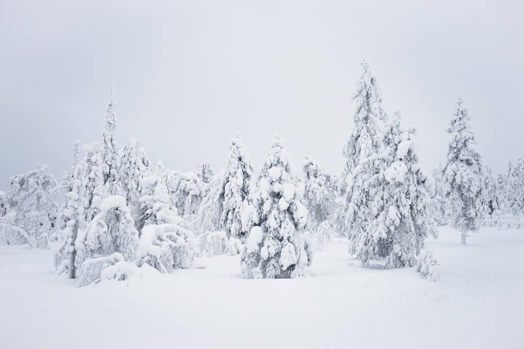 Winter wonderland Finland_2
