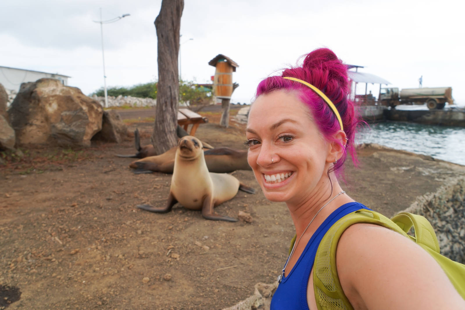 Traveling to the Galapagos Islands