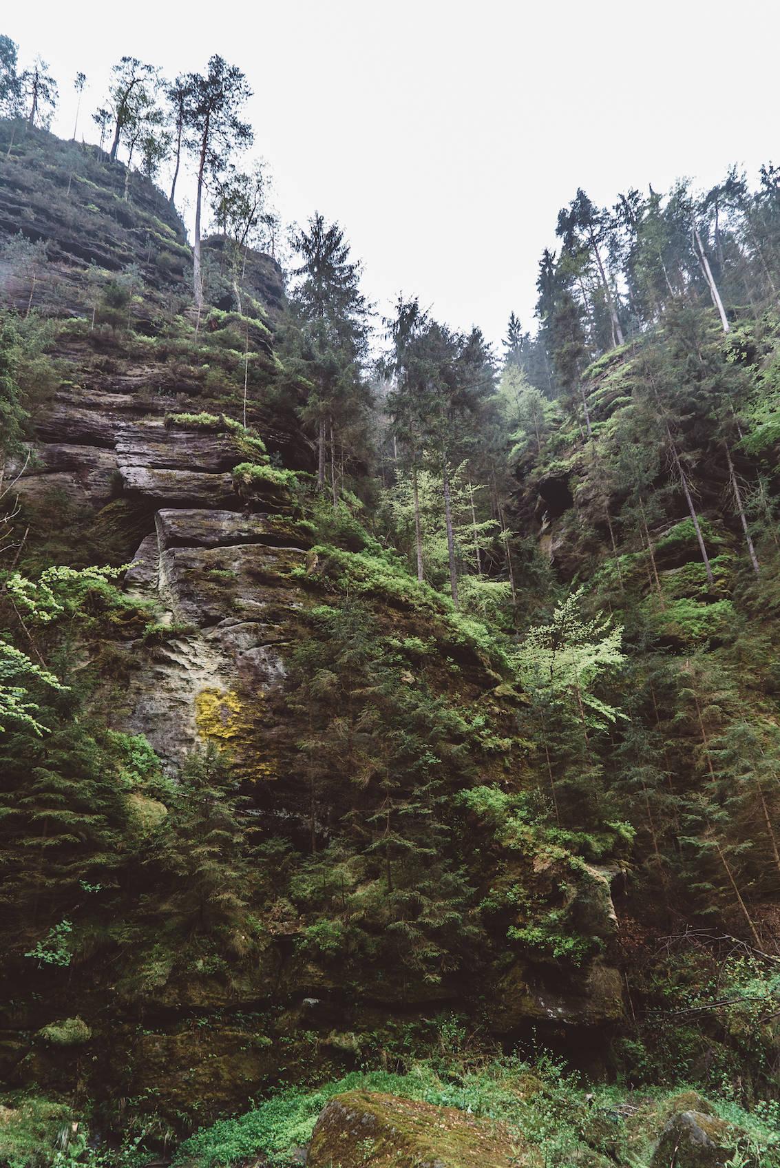 Bohemium Switzerland National Park_8