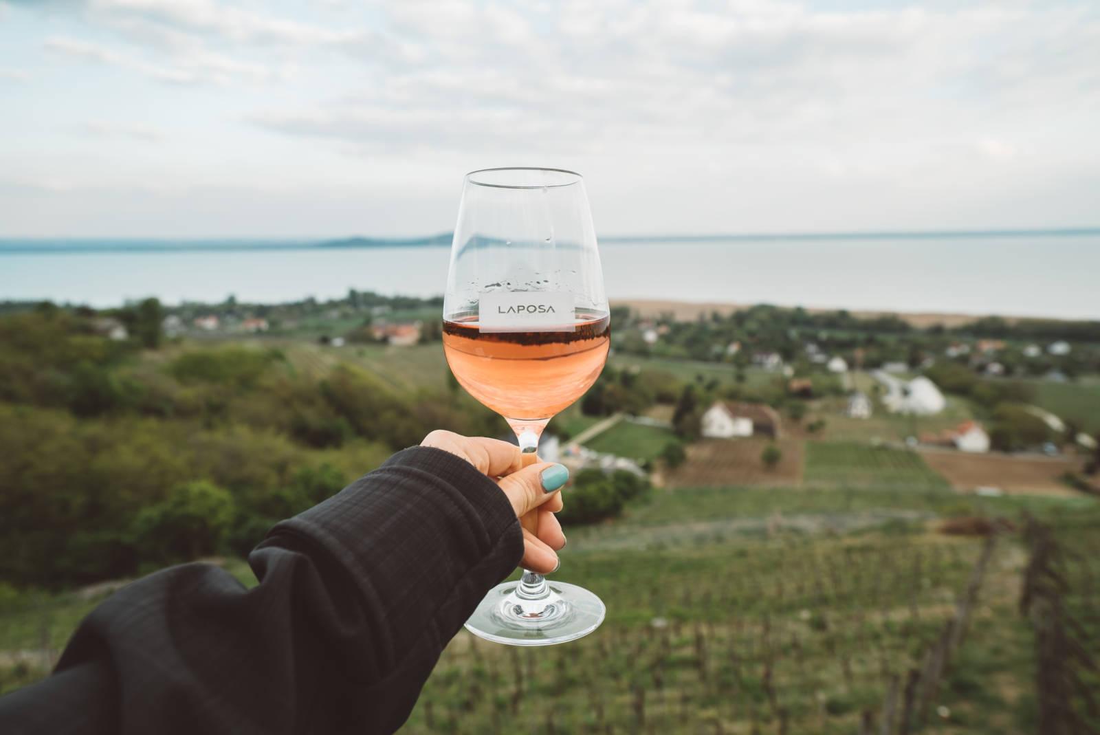 Laposa Vineyard Hungary