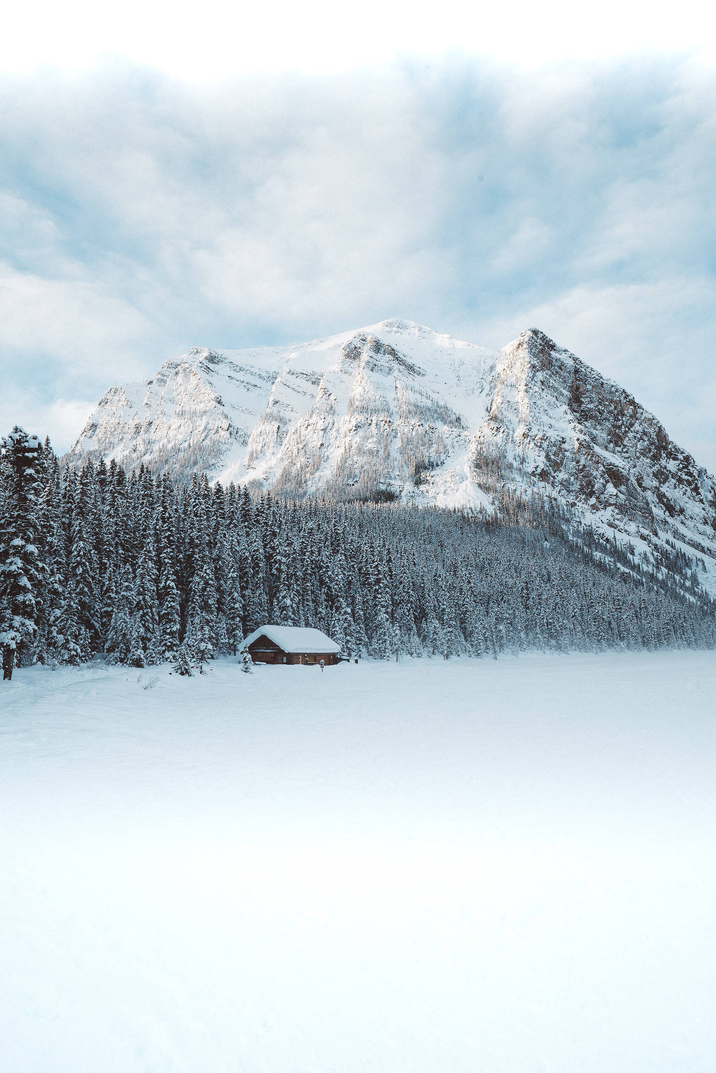 Why You Need to Visit Alberta This Winter
