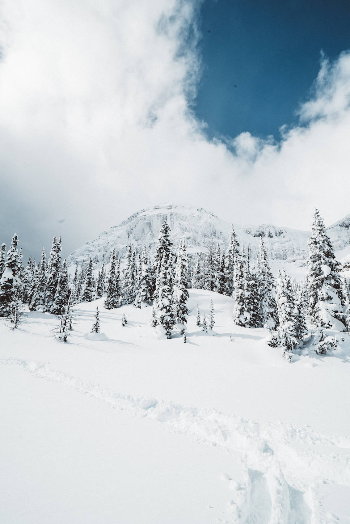 Why You Need to Travel to Alberta This Winter