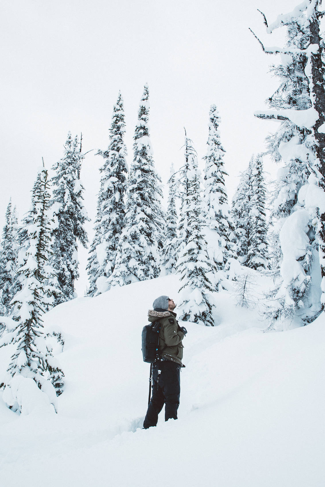 Alberta this winter