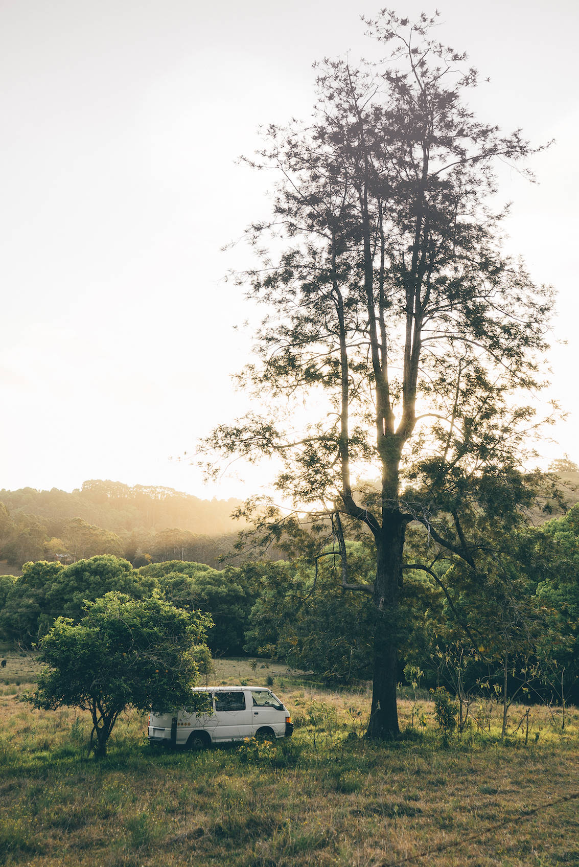 10 top things to do Gold Coast Australia_7