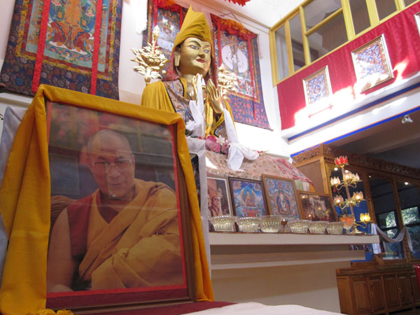 Learn Buddhism in Dharamsala, India