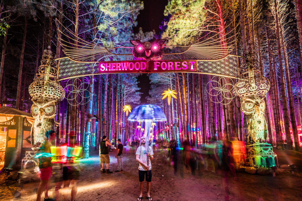 Electric Forest Nighttime