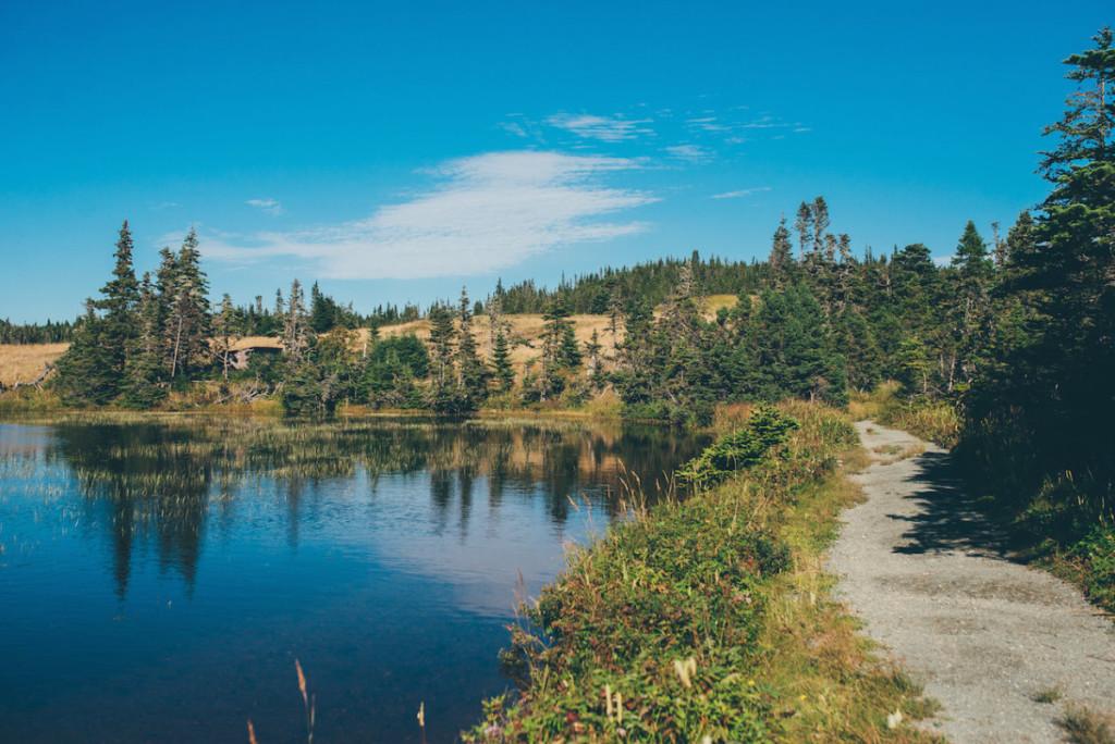 Newfoundland Road Trip_18