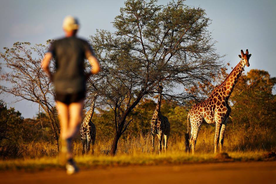 5 Marathons Worth Traveling the World For