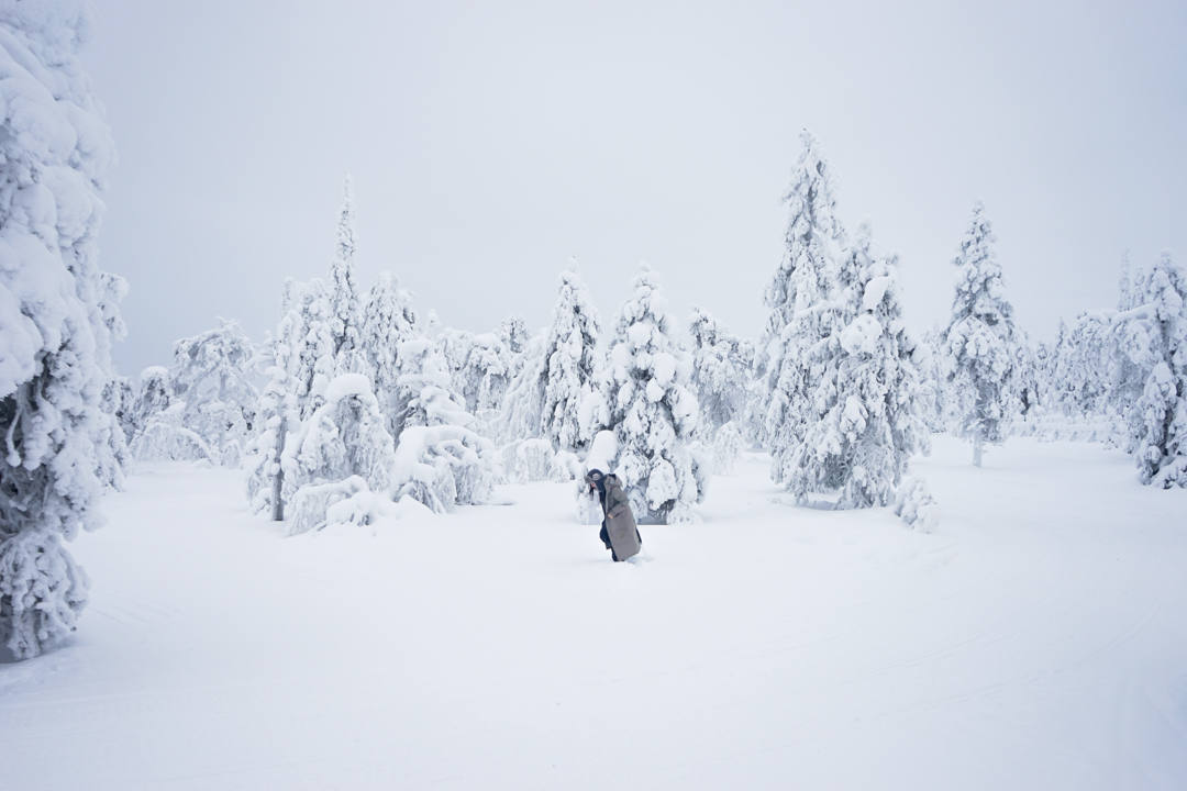 Winter Wonderland Finland