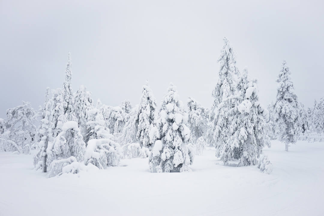 Winter wonderland Finland_2