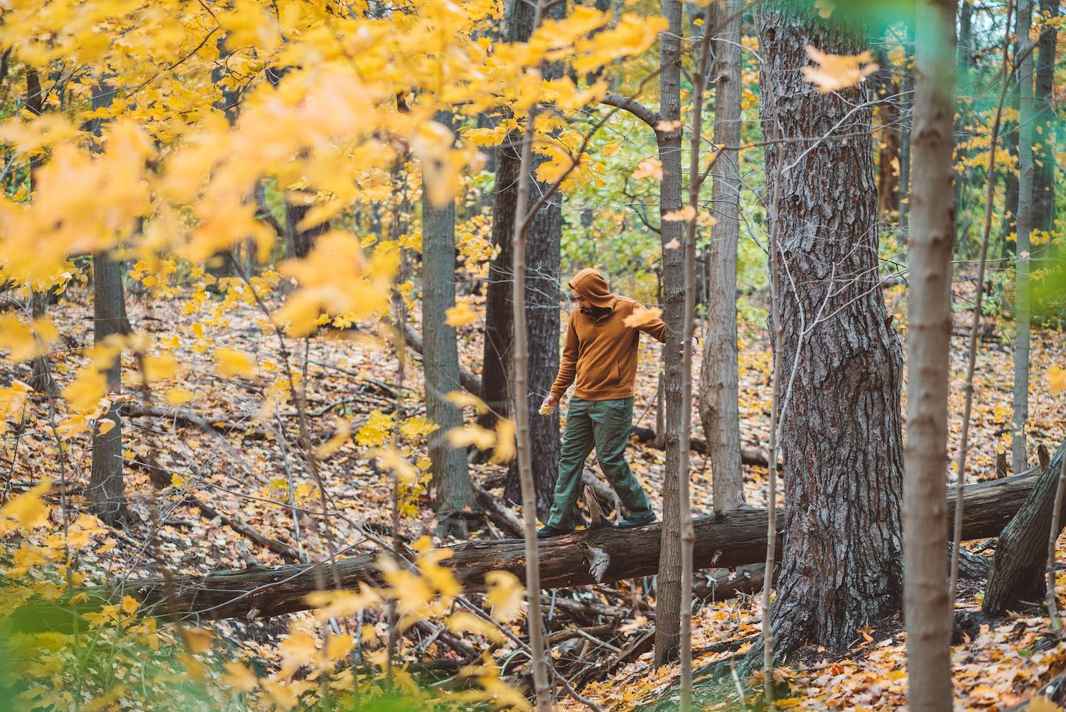 Why You Need to Experience Autumn in Canada