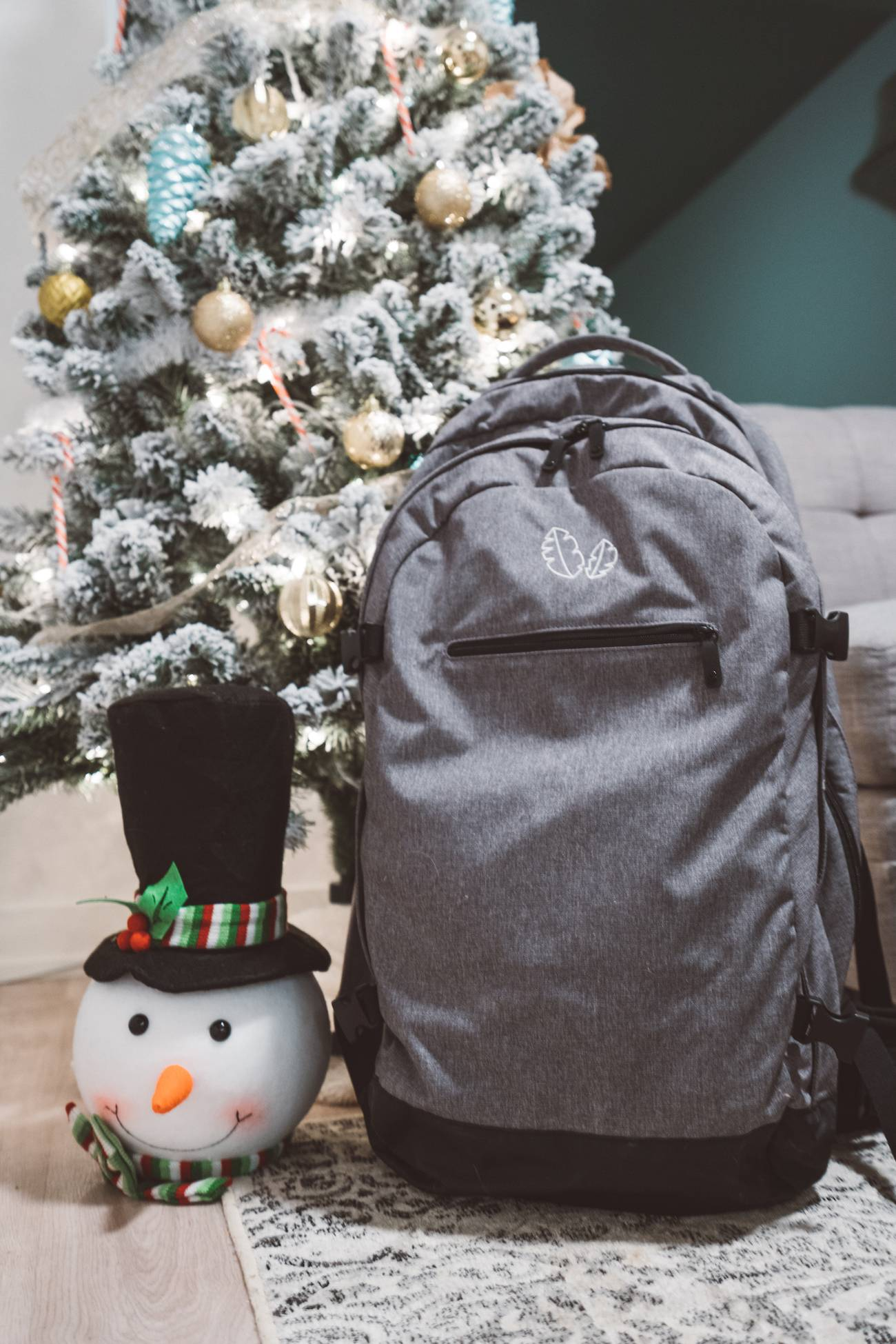 Holiday Gift Guide for Travel 2018 Travel Backpack