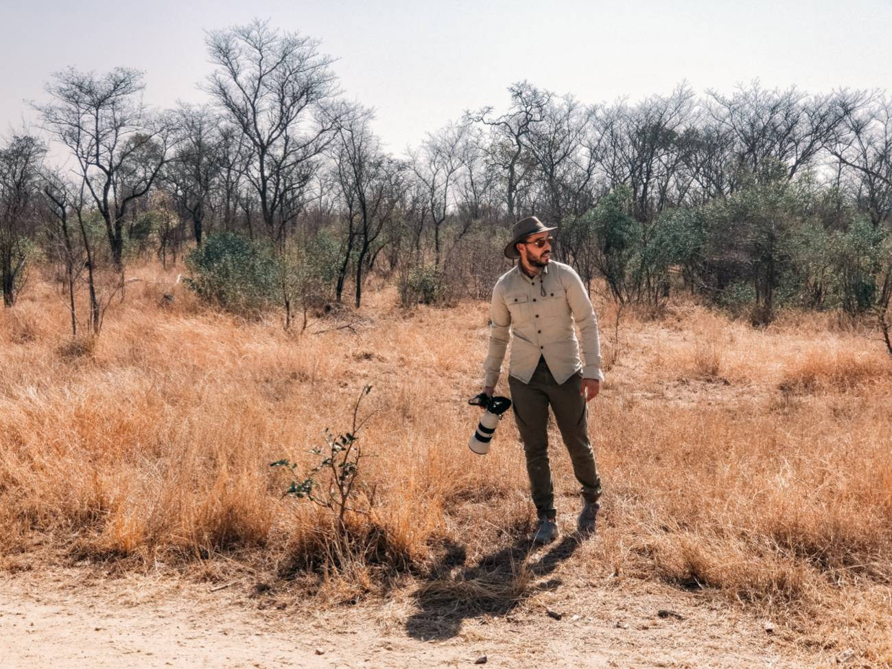 Shooting Wildlife Photography with Any Camera