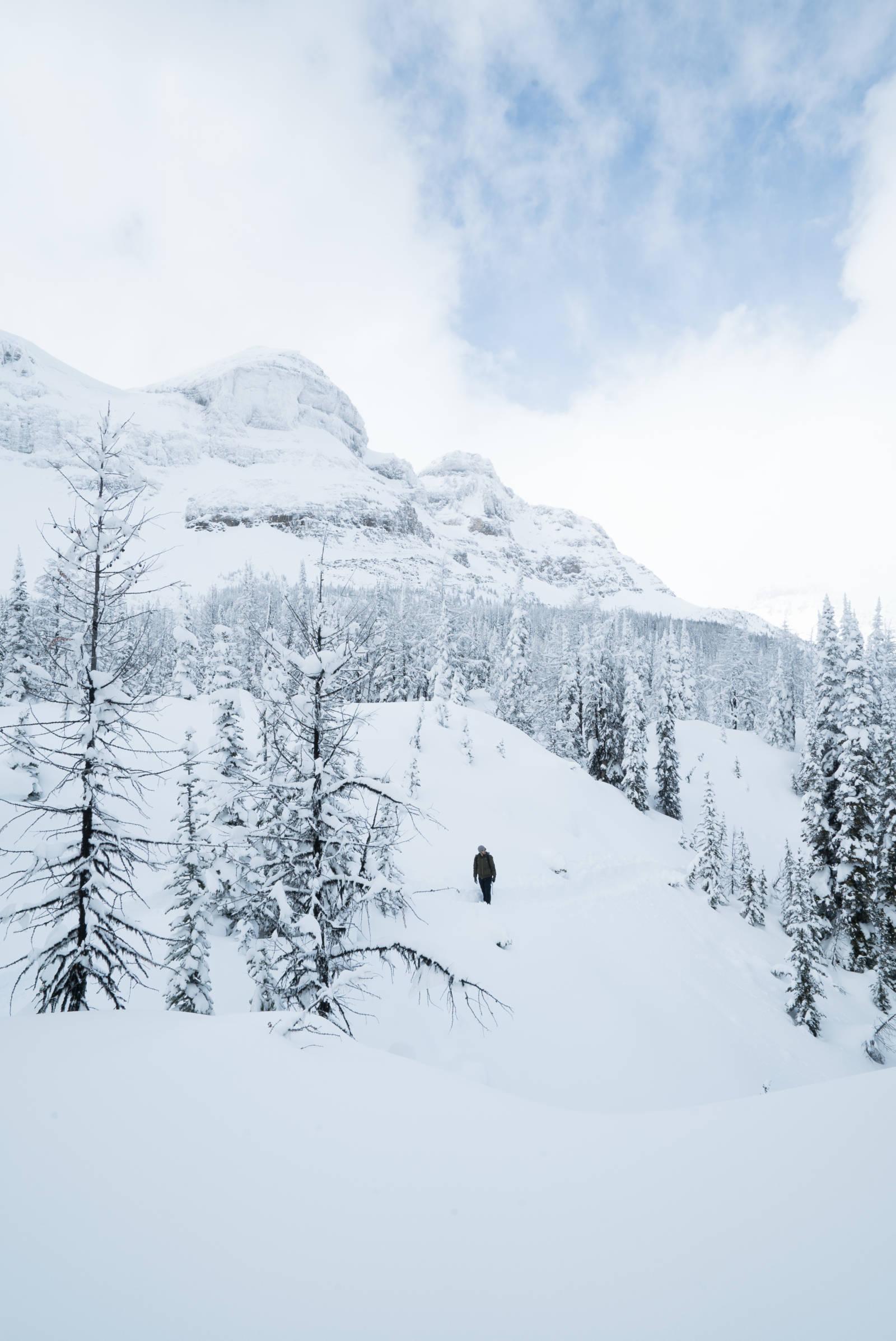 Alberta in winter
